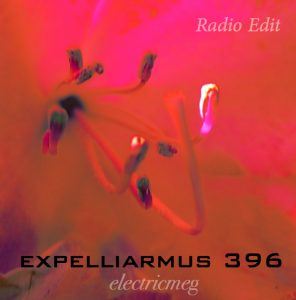 "Expelliarmus 396 ""I Am Love"" Radio Edit"